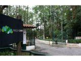 Hidrojateamento no Parque do Carmo
